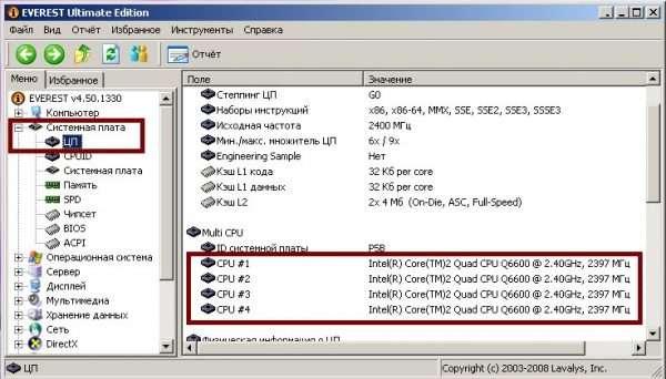 Блок Multi CPU в утилите Everest