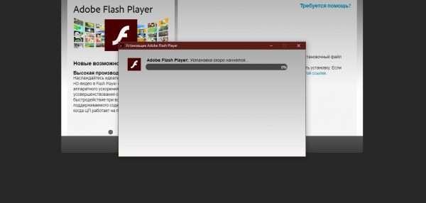 Как установить Adobe Flash Player