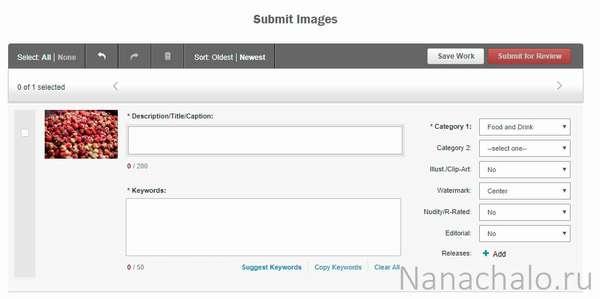 Shutterstock – заработай на фотографиях и видеороликах