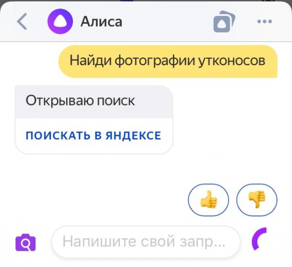 Алиса ищет в Яндексе