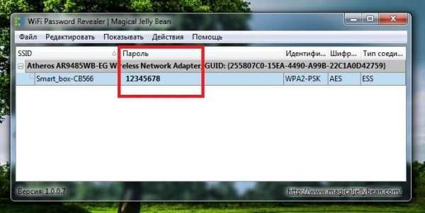 Рабочее окно программы WiFi Password Revealer