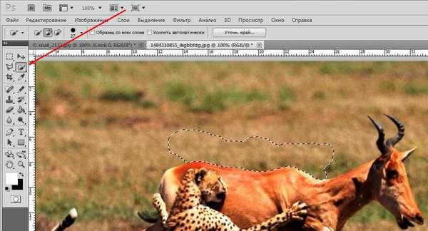Как сделать у картинки прозрачный фон в фотошопе