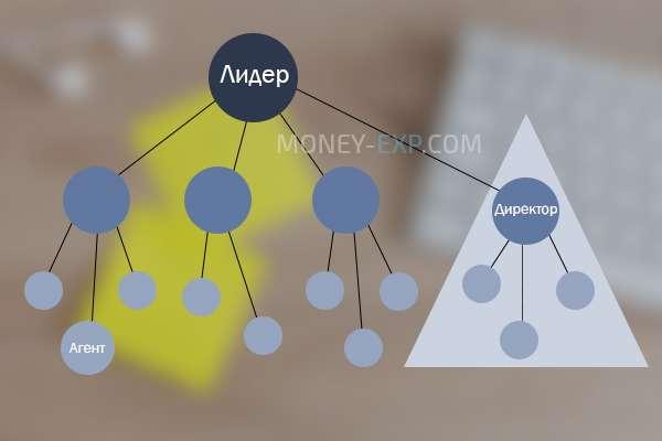 Ступенчатый-отделяющий план сетевого маркетинга