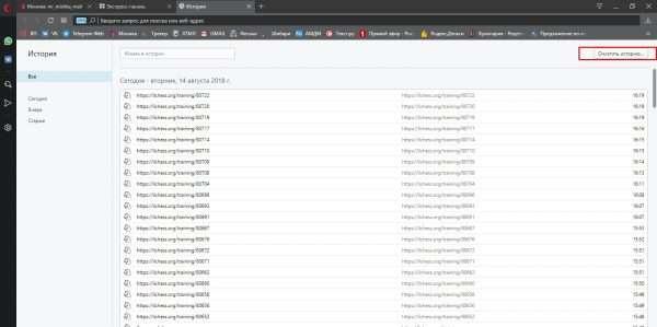 Как очистить историю в браузерах на движке Chromium