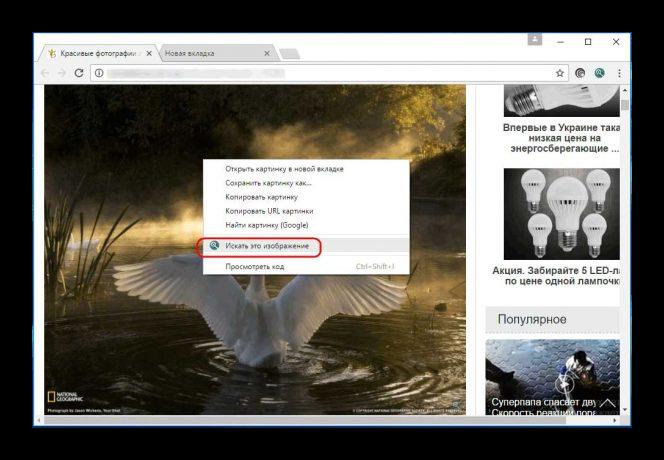 поиск картинки расширение для браузера
