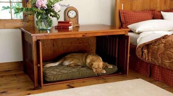 Мебель для домашних животных может быть функциональной и оригинальной