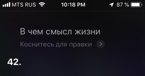 Siri ищет смысл жизни